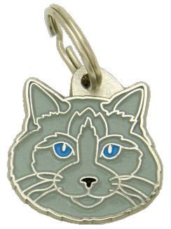 Ragdoll cat blue mink - pet ID tag, dog ID tags, pet tags, personalized pet tags MjavHov - engraved pet tags online